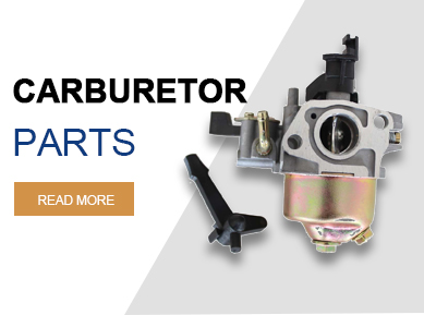 Carburetor Kits & Parts